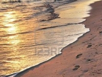 2871122-footprints-on-sandy-tropical-beach-at-sunrise
